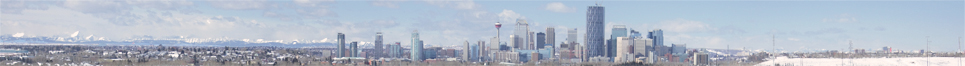 non-standard-sized banner ad for Trierarch Web Design and Development featuring Calgary skyline